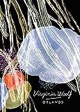 Orlando. Vintage Classics Woolf series