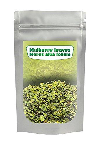 Weiße Maulbeere Blatt Tee (Morus alba) 400G, geschnitten