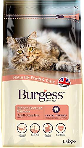 Burgess Supacat Saumon écossais 1.5 kg
