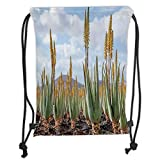 Fevthmii Drawstring Backpacks Bags,Plant,Photo from Aloe Vera Plantation Medicinal Leaves Remedy Fuerteventura Canary Islands Decorative, Soft Satin,5 Liter Capacity,Adjustable St