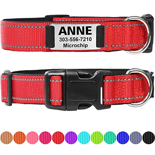 Taglory Personalized Dog Collar with Nameplate, Custom Engraved Pet ID Tags No Noise,Reflective Training Collars for Small Medium Large Dogs,Red
