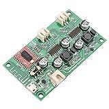 Hilitand Tarjeta Amplificador de Potencia Bluetooth Dual Canal 2 x 6 W CC 5 V/3,7 V batería de Litio con gestión de la Carga HF69B