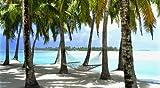 Aitutaki Lagoon Resort Aitutaki Cook Islands Poster Print (20 x 11)