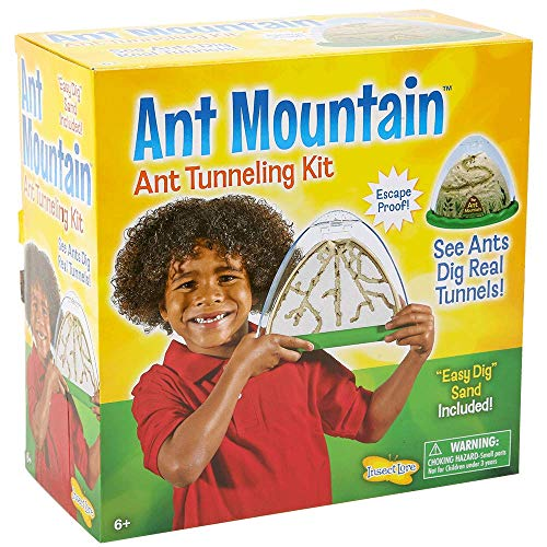 small Entomological ant farm – double-sided ant hill – includes live ant habitat, sand and vouchers