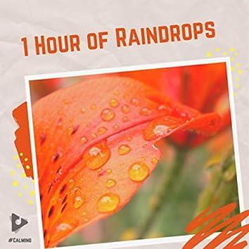 1 Hour of Raindrops