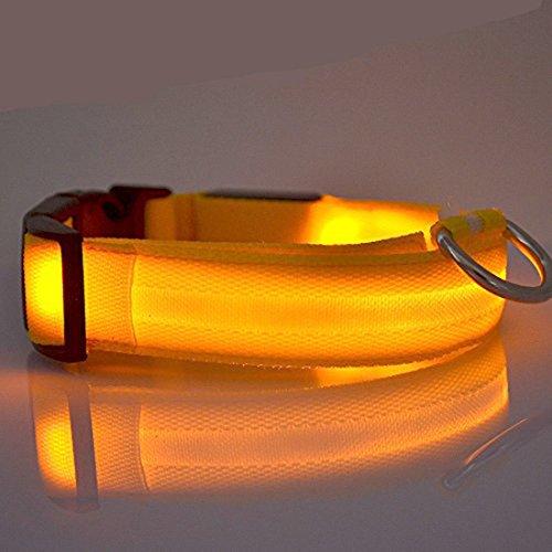 Hundehalsband mit LED-Lichtern, blinkend, Sicherheits-Halsband aus Nylon, verstellbar, Gelb