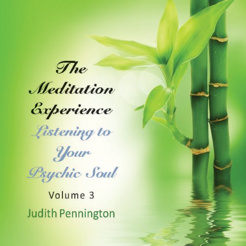 The Meditation Experience: Listening to Your Psychic Soul, Vol. 3 audiobook cover art