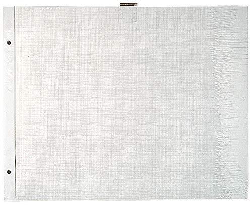 Exacompta 16812E Packung mit 10 Blättern Einlagen für Fotoalbum, 29 x 37cm, 1 Pack, Weiß