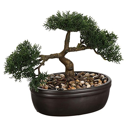 Bonsai-Vaso in ceramica, H .23 cm
