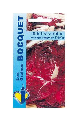 Les Graines Bocquet - Graines De Chicorée À Large Feuille Rosa Di Treviso 2 (Rouge De Trèvise) - Graines Potagères À Semer - Sachet De 4Grammes