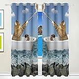 Ahomy Vorhänge für Katzen, selbstgemachtes Selfie, das Meer, isoliert, Ösenvorhang, für...