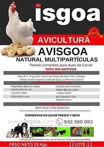 potente para casa Pollos, una mezcla natural de múltiples cereales para pollos.  Bolsa AVISGOA 25kg Isgoa
