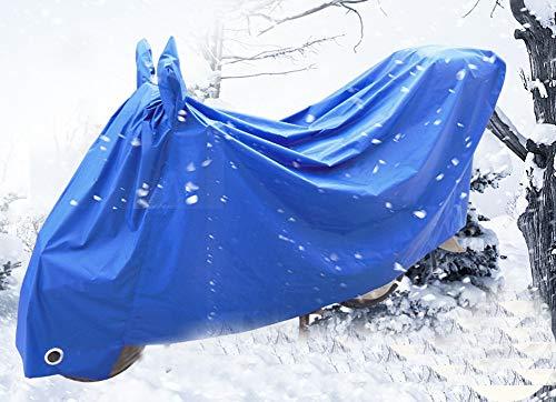 Zhuoyue - Set di 3 aquiloni da addestramento in nylon per bambini, con draghi bianchi