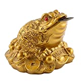 Garosa Rana de Dinero Feng Shui Chino Riqueza Afortunada Moneda Sapo Decoración de La Oficina En Casa Buen Regalo de La Suerte Decoración de La Suerte(Dorado)