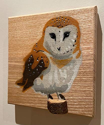 Barn Owl Bird Portrait Stencil on Ash Wood with 3D stump   Handmade in the UK spray painted art   Easter Gift   For Him or Her   Unique Birthday Present   picture size 14 x 14 cm