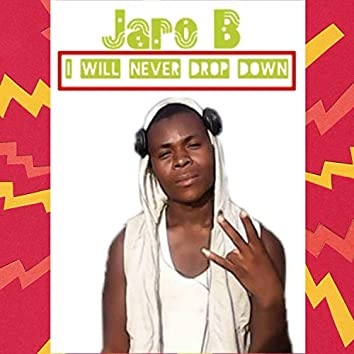 I Will Never Drop Down (Freestyle)
