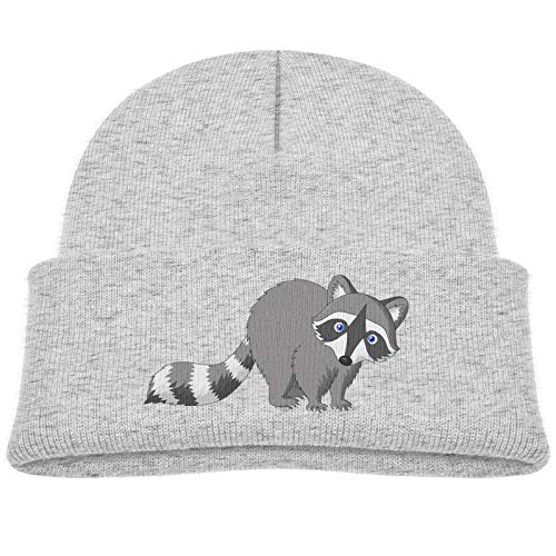 SHUANGFEI Kids Knitted Beanie Hats,Little Gray Raccoon,Skull Cap Winter Hip-hop Hat Headwear for Boys Girls Baby