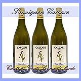 SAUVIGNON MARCHE IGT bottiglia 0.75 cantina Conti Leopardi CALCARE