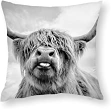 GZLFDTH-LJ Funny Highland Cow Throw Pillow Covers Decorative Protector Cases Home Decoration Zippered Pillowcase Square Cu...