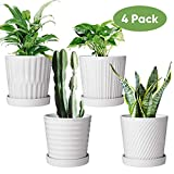 Flower Pots,6 Inch Succulent Pots with Drinage,Indoor Round Planter Pots with Saucer,White Cactus Planters with Hole,Outdoor Graden Pots 4 Pack