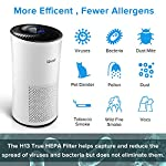 LEVOIT Air Purifier for Home Large Room with H13 True HEPA Filter, Air Cleaner for Allergies and Pets, Smokers, Mold… 11 Professional Air Care: Breathe in air that's free of 99. 97% of 0. 3 micron airborne particles such as dust, and pollen The activated carbon filter absorbs cooking odors, household odors, smoke, and volatile organic compounds (VOCs) Ideal for Allergies and Pet Owners: True HEPA Filter reduces pet odors, and traps pet fur and other contaminants It also helps relieve allergies by capturing airborne contaminants such as dust, pet dander, pollen, and mold. Wide Coverage: Enjoy fresh air in only 30 minutes in rooms as large as 1076ft², and 15 minutes in rooms as large as 538 ft². Maximum benefits 538 ft².