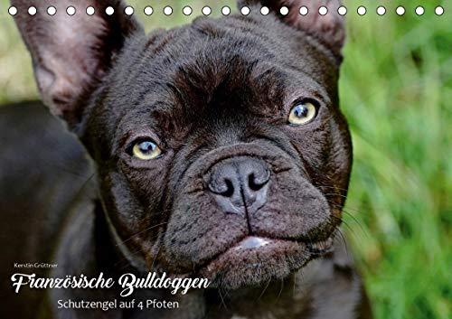 Französische Bulldoggen - Schutzengel auf 4 Pfoten (Tischkalender 2021 DIN A5 quer)