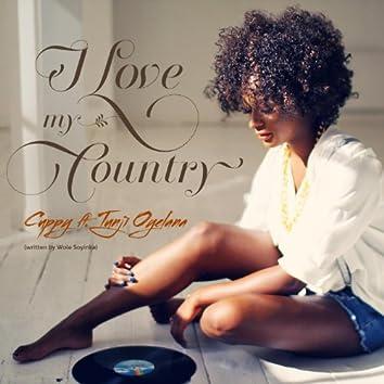 I Love My Country (feat. Tunji Oyelana)