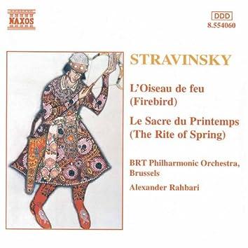 STRAVINSKY: Firebird (The) / The Rite of Spring