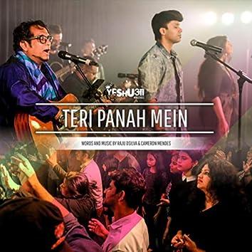 Teri Panah Mein (feat. Raju D'silva)