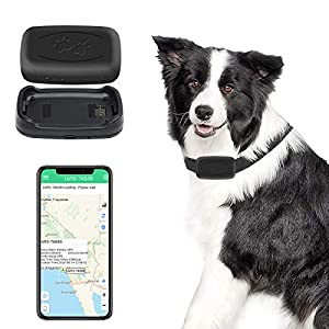 GPS Pet Tracker, Real-Time Cat Dog Locater & Activity Monitor, Cat Dog Tracking Device with Unlimited Range