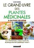 Le grand livre des plantes médicinales à cultiver soi-même : sur un rebord de fenêtre,...
