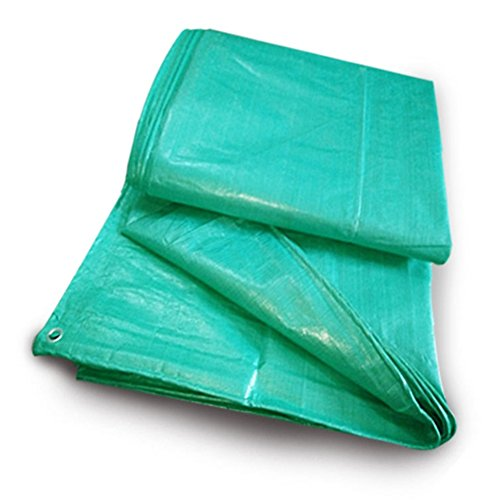 ZEMIN Bâche Protection Couverture Transparente Crème Solaire Imperméable Drap Tente Toit Coupe-Vent Compact Tissé Polyester, Vert, 180G/M², 13 Tailles Disponibles (Color : Green, Size : 8X10M)