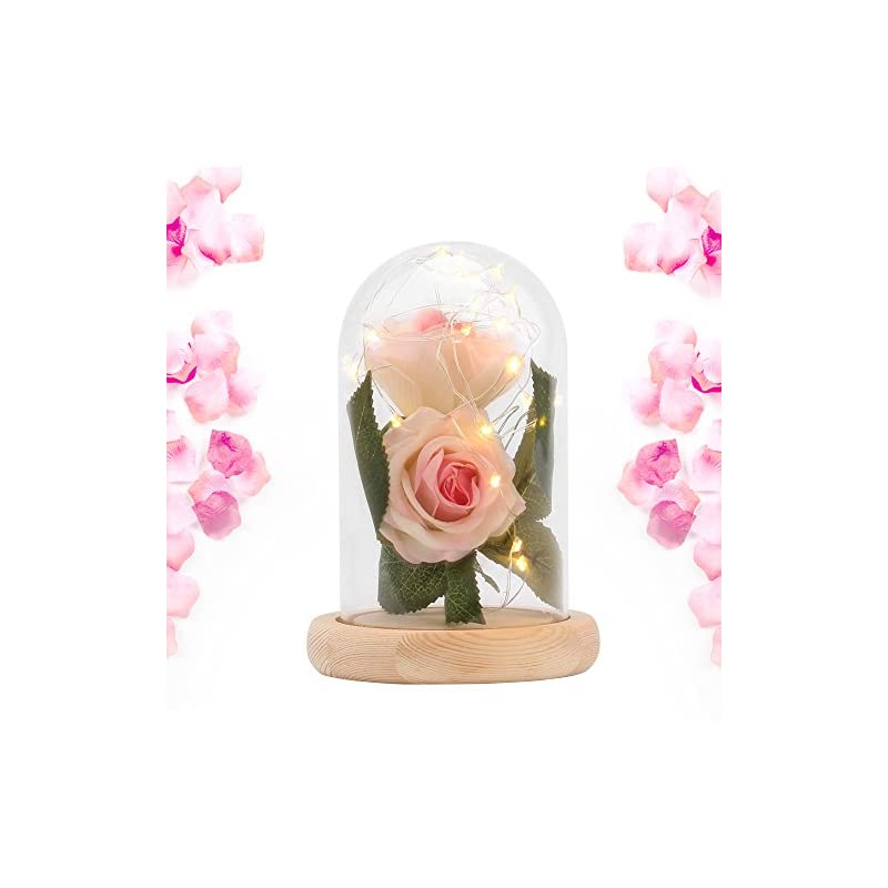 silk flower arrangements ddsky beauty and the beast silk rose and led light with fallen petals in a glass dome on a wooden base artificial flowers full kit creative diy gift for christmas valentine's day (pink)