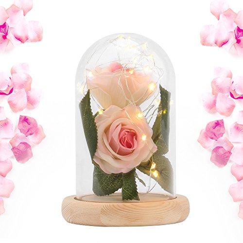 XIANNVV Rosa Preservada, Rosa De Seda, Rosa Roja De Cúpula De Vidrio, Utilizada para El Día De San Valentín, Cumpleaños, Bodas, Navidad, Regalo del Día De La Madre (Rosado, Dos Flores)