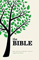 Holy Bible (Bible Nrsv)