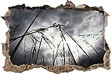 Pixxprint 3D_WD_S2412_62x42 düstere Landschaft mit Gras Wanddurchbruch 3D Wandtattoo, Vinyl, bunt, 62 x 42 x 0,02 cm