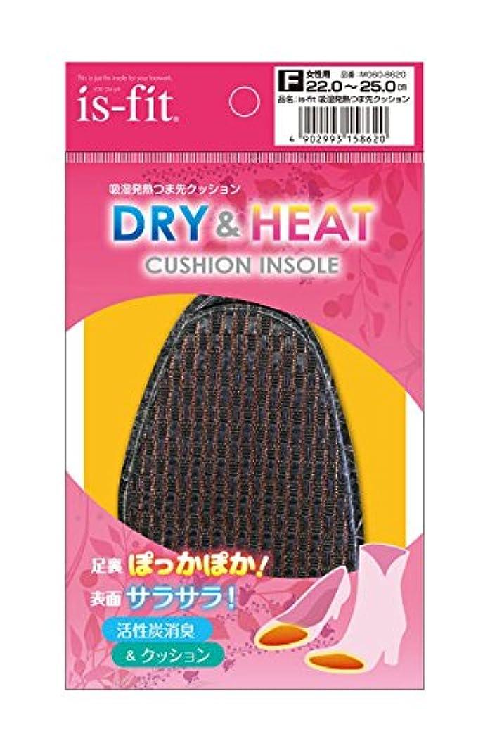 ネーピア進化する必要ないis-fit(イズフィット) 吸湿発熱つま先クッション 女性用 フリー(22.0cm-25.0cm) ブラック