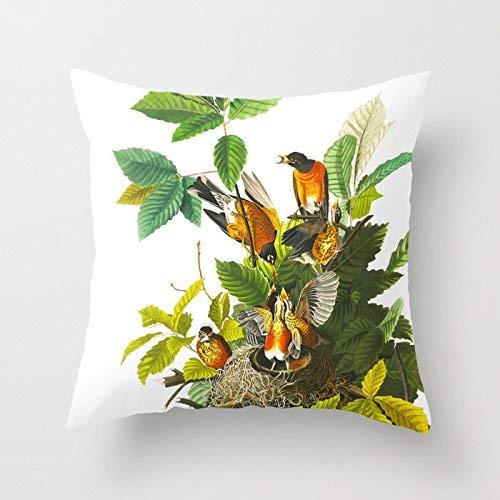 Pillowcase Vintage Animal Pattern Dragonfly Pairs Franch Theme Oficina Colorida Funda De Cojín Funda De Almohada Sofá De Regalo Cuadrado Ropa De Cama De Impresión Suave Personaliz