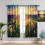 Pcglvie Paisaje cortinas para dormitorio, cortinas de 99 cm de longitud del atardecer bosque y colinas habitación oscurecida de 54 x 39 pulgadas de ancho