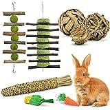 ERKOON Bunny Chew Toys, Rabbit Treats Hamster Chinchilla Guinea Pig Boredom Breaker Natural Apple Stick Small Animal Fun Corn, Teeth Care Molar Toy for Gerbil Rat Syrian Degus, Squirrels