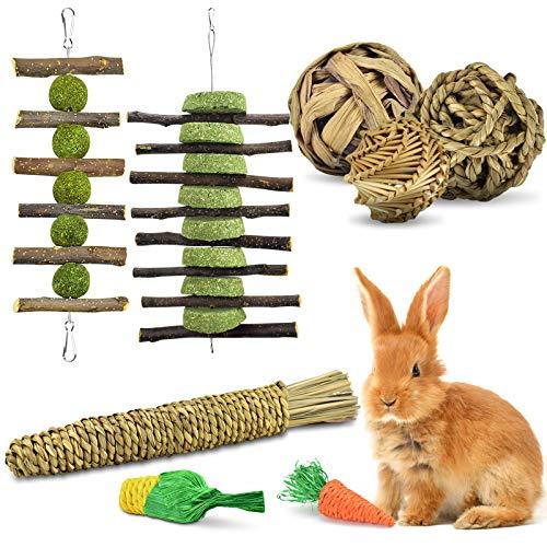 ERKOON Kaninchen Spielzeug, Kleintiere Kauspielzeug Hasen Natürliche Timothy-Gras kaubälle Knabber Holzkette Grasspielzeug Zahnpflege für Häschen Chinchilla Hamster Meerschweinchen Rennmäuse