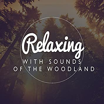 Relaxing with Sounds of the Woodland