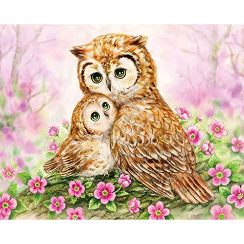 UOOOOF Pintura acrílica para niños y Adultos Principiantes, sin Marco o Lienzo-Búho Flor