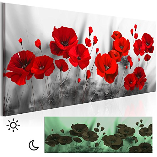 decomonkey Leinwand Bilder nachtleuchtend 120x40 cm Wandbilder Tag & Nacht Design Bilder mit 3D nachleuchtenden Farben Vlies Leinwand Blumen Mohnblumen rot