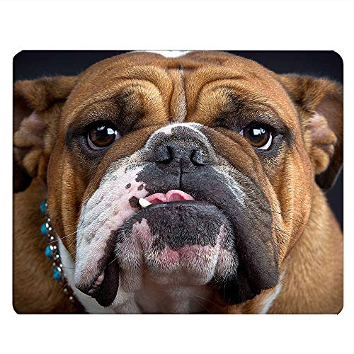 Nicokee Bulldog Gaming Mousepad Bulldog Dog Puppy Brown Mouse Pad Mouse Mat for Computer Desk Laptop Office 9.5 X 7.9 Inch Non-Slip Rubber