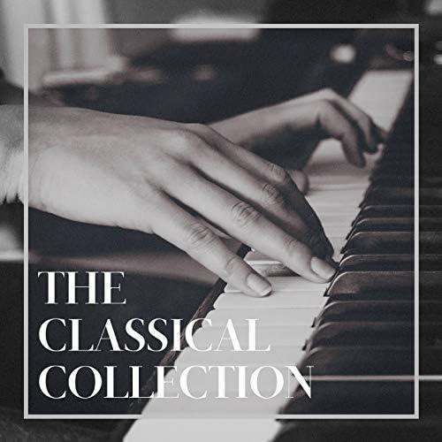 Classical Study Music, Classical Music Radio, Classical Music For Genius Babies