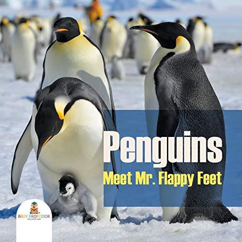 Penguins - Meet Mr. Flappy Feet