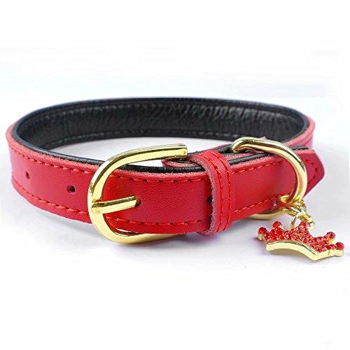 PET ARTIST Collares de piel suave y acolchados, para mascotas, gatos, cachorros, chihuahua, color rojo, con dije de corona extra XS
