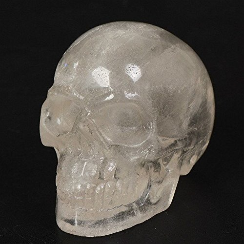 Natural Quartz Crystal Skull Figurines Healing Gemstone Stone Sculpture Statue Collectible
