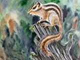 mlpnko DIY Pintar por números Ardilla Kit de Pintura al óleo por número, Pintura Colorida en Lienzo para Pared, Dibujo con Pinceles
